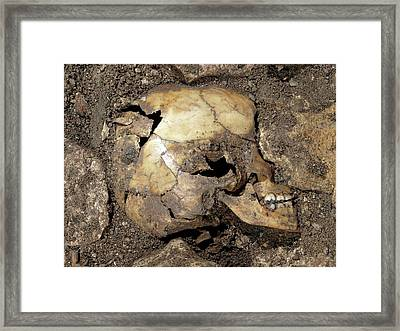Partially Excavated Human Fossil Framed Print by Javier Trueba/msf