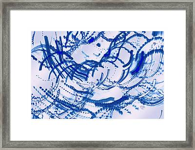 Particles Of Blue Framed Print