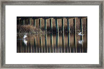 Parting Is Such Sweet Sorrow Framed Print by Paulette Thomas
