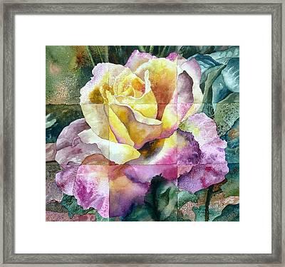 Partitioned Rose  Framed Print