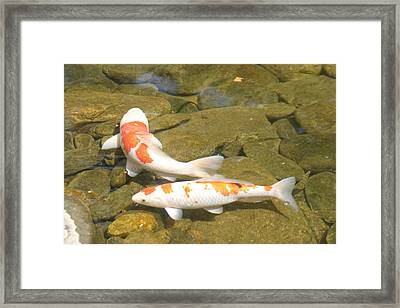 Partners Framed Print by Dervent Wiltshire