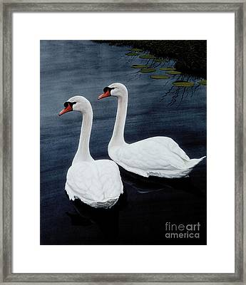 Partners Framed Print by Michael Swanson