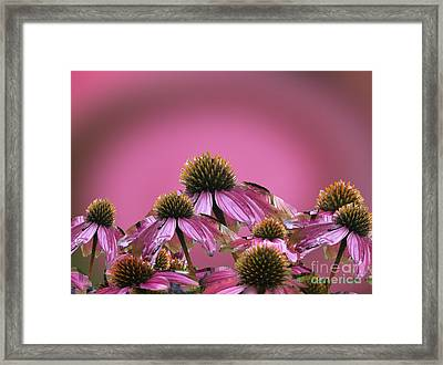 Party Cones Framed Print
