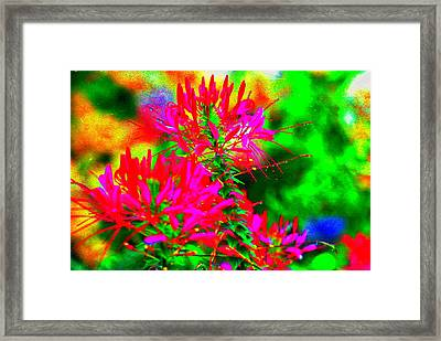 Party In The Garden Framed Print by Ira Shander