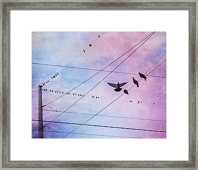 Party Line Framed Print by Amy Tyler