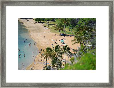Party On The Beach Framed Print