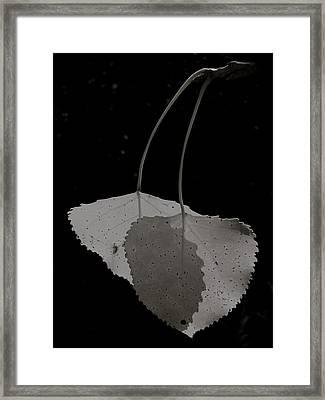 Pas De Deux Framed Print by Tim Good