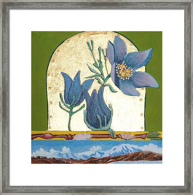 Pasque Flower In The Spring Framed Print by Amy Reisland-Speer