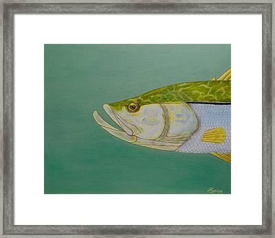 Snook Framed Print by Glass Illuzions