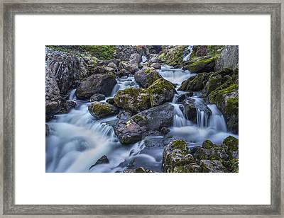 Pass Me By Framed Print