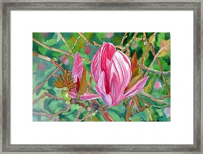 Passage Framed Print by Debi Singer