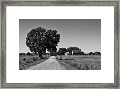 Passage Of Time Framed Print by Tom Druin