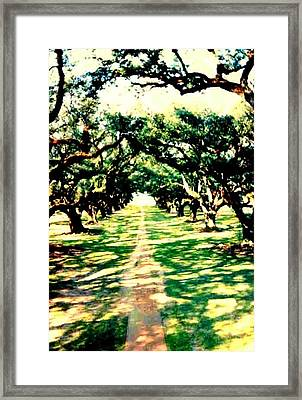 Framed Print featuring the photograph Passage Through The Shadows At Oak Alley by Michael Hoard