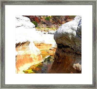 Framed Print featuring the photograph Passage To Color by David  Norman