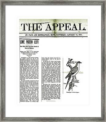 Passenger Pigeon Newspaper Article Framed Print by Library Of Congress