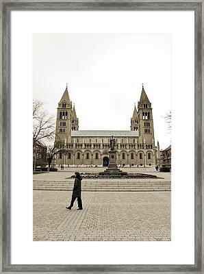 Passing By Framed Print by Gabor Fichtacher