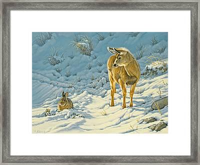Passing Curiosity Framed Print by Paul Krapf