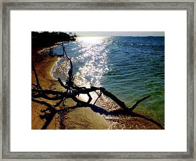 Passing Of Time Framed Print by Karen Wiles