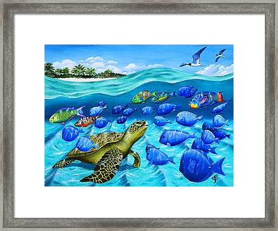 Passing Parade Framed Print by Carolyn Steele