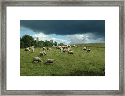 Passing Shower Framed Print by Gerald Hiam