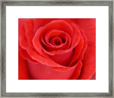 Passion Framed Print by
