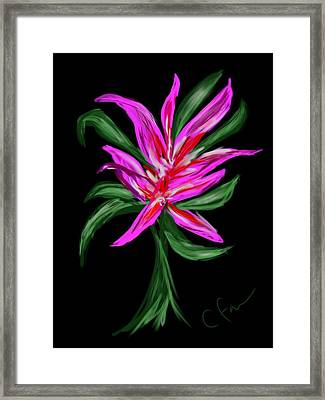 Framed Print featuring the digital art Passion Flower by Christine Fournier