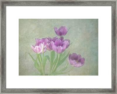 Passionately Purple Framed Print