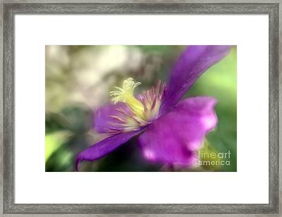 Passionate About You Framed Print by Mary Lou Chmura