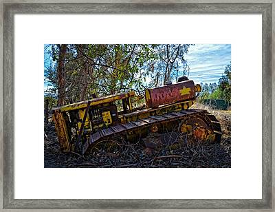 Past It's Prime Framed Print by Lynn Bauer