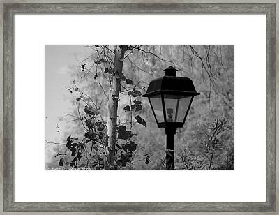 Framed Print featuring the photograph Past N Present by Elaine Malott