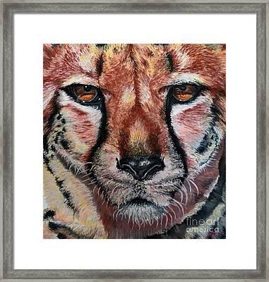 Pastel Cheetah Framed Print by Ann Marie Chaffin
