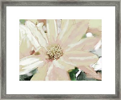Pastel Daisy Photoart Framed Print by Debbie Portwood