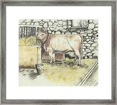 Cow In A Barn Framed Print