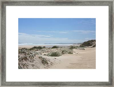 Pastel Dunes Framed Print by Elaine Teague