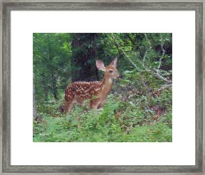 Pastel Fawn 1 Framed Print