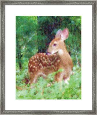 Pastel Fawn 2 Framed Print