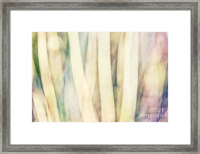 Pastel Forest Wild Grasses Photographic Abstract Framed Print