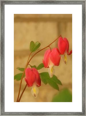 Pastel Hearts Framed Print