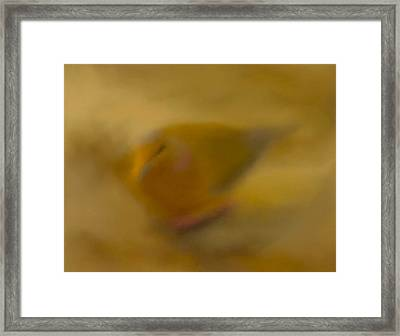 Pastel Illusion Framed Print by Catherine Renzini