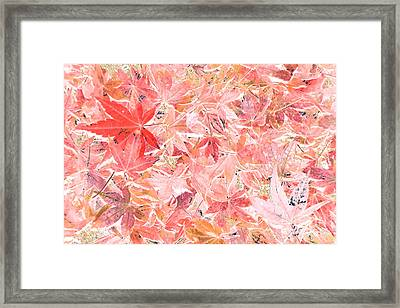 Pastel Impressions Of Autumn By Kaye Menner Framed Print by Kaye Menner