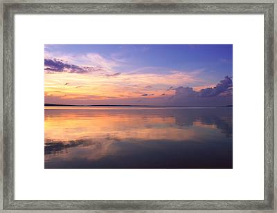 Pastel Majesty Framed Print by Rachel Cohen