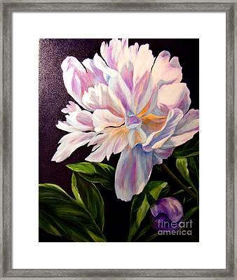 Pastel Peony Framed Print