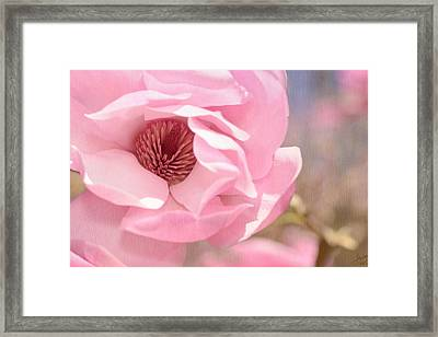 Pastel Pink Petals And Paint Framed Print by Lisa Knechtel