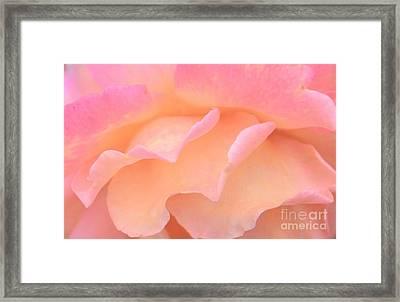 Pastel Ruffles Framed Print