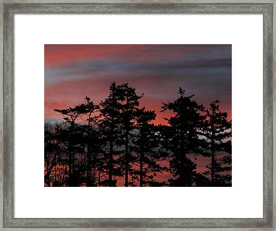 Framed Print featuring the photograph Pastel Silhouettes by Suzy Piatt