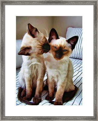 Pastel Sketch Of Siamese Love Framed Print by Elaine Plesser