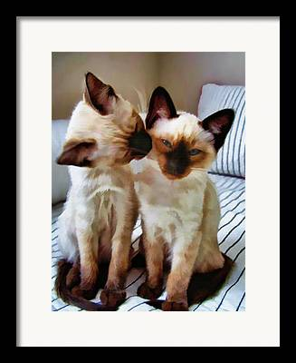 Litter Mates Framed Prints