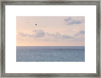 Pastel Sunset Sky At The Ocean Seascape With Flying Birds Photo Art Print Framed Print