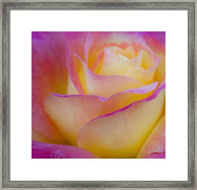 Framed Print featuring the photograph Pastels by David Millenheft