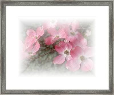 Pastels In Pink Framed Print